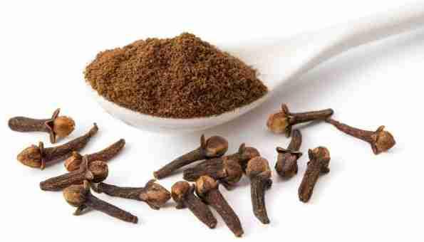 Chá de cravo da india para tratamento caseiro para mau hálito