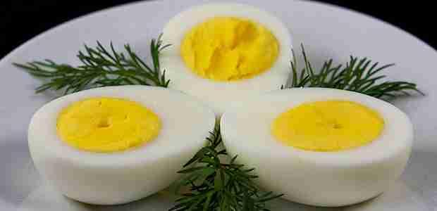 Dieta do Ovo: Veja como fazer e uma ideia de cardápio para usar! Confira!