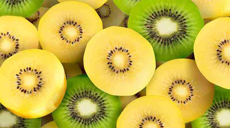 tipos de kiwi