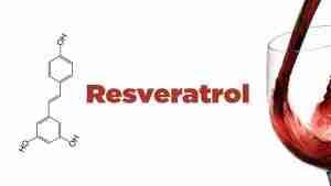Resveratrol: É a fonte da juventude? Quais os benefícios? Onde encontrar?